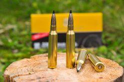 IWA 2016: RWS Speed Tip .338 LM caliber bullet