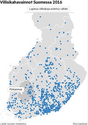 Villisikakanta on levittäytynyt erityisesti Kaakkois-Suomeen, Savoon ja Itä-Uusimaalle.