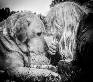 Andy Biggar dogs capture the bond