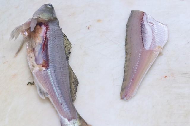 5. Filee irrotetaan kalasta. Sisälmykset jäävät vatsalaukkuun, joten fileoidessa kalaa ei tarvitse perata lainkaan. Kalan toinen kylkipuoli fileoidaan samoin kuin edellä.