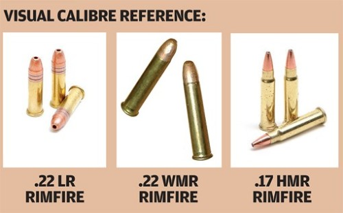 Different types of rimfire bullet.