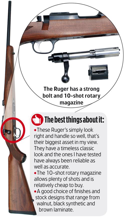 Ruger M77/22 Carbine