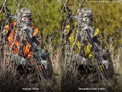 Blaze Orange & Camouflage: Human vs. Deer Vision.