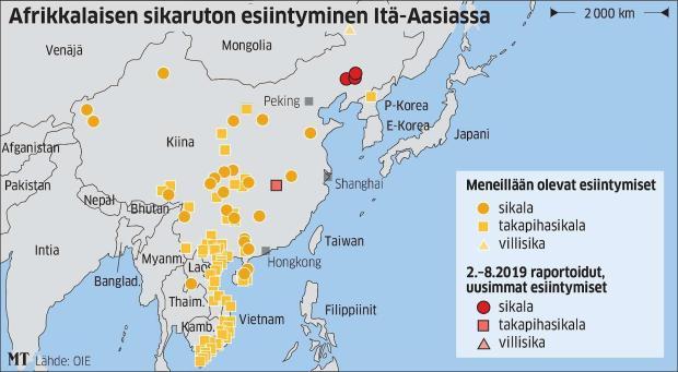 Ensimmäinen havainto afrikkalaisesta sikarutosta Kiinassa tehtiin maan koillisosassa lähellä Pohjois-Korean rajaa elokuussa 2018. Tauti on levinnyt myös naapurimaihin, muun muassa Vietnamiin helmikuussa 2019.