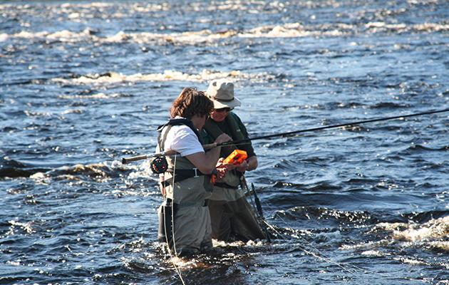 Salmon fishing in Russia
